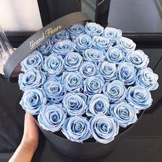 flower, flowers, rose discovered by i n n o c e n Flower Box Gift, Flower Boxes, My Flower, Luxury Flowers, Beautiful Flowers, Rosen Box, Flower Aesthetic, Arte Floral, Blue Roses