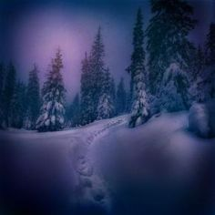Winter - Pixdaus