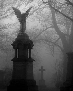 Cemetery angel in a fog Truly mysterious Cemetery Angels, Cemetery Statues, Cemetery Art, Angel Statues, Old Cemeteries, Graveyards, Spooky Places, Ange Demon, Arte Obscura