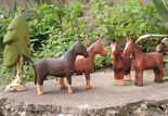 Buntspechte: Horses