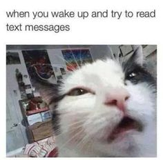 When You Wake Up - Funny Memes