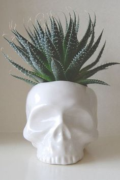 The Best Holiday Gifts From A To Z.Everyday is a good hair day for this skull planter. Skull Decor, Skull Art, Ceramica Exterior, Holiday Fun, Holiday Gifts, Skull Planter, Deco Studio, Decoration Plante, Plants Are Friends