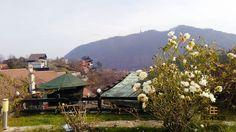 #exterior #autumn #garden #view #belvedererestaurant #outside #autumnbreeze #gorgeousview #brasov Indoor, Exterior, Cabin, Mountains, House Styles, Nature, Pictures, Travel, Interior