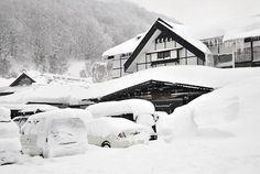 積雪515cm、国内最高を記録…青森・酸ヶ湯