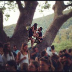 On thee tree    Lagadas feast, Ikaria    wearthistoday #Instagram