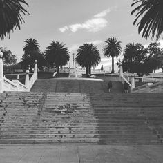 Outside workout today with these bad boys. These stairs will be the death of me  #stairs #geelong #geelongwaterfront #outsideworkout #lunges #australia #victoria #walk #nature #gettingintouchwithnature #fit #fitness #health #healthy #fitchick #exercise #keepingfit #keepfit #livelife #lovelife #norest #runner #run #nike #bliss #summerbody #training #travel #beach #workout by bex.healthy.life.changes http://ift.tt/1JtS0vo