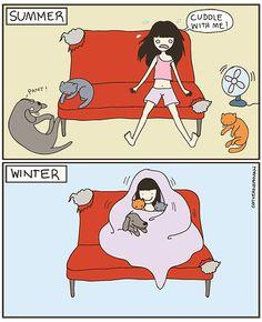 I love Cat vs. Human