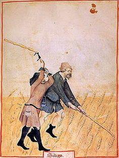 Un camperol  és una persona que té com a ofici treballar les terres.