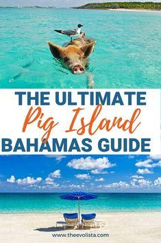 15 Bahamas Travel Ideas Bahamas Travel Bahamas Outfit Photo Spots
