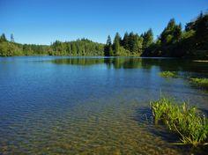 Lake Aberdeen, Western Washington  my swimming hole as a kid, boy the memories