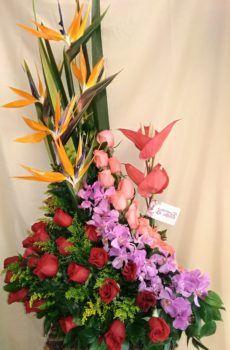 Productos – Página 2 – Floristeria la Maria Vase, Plants, Shape, Fresh Flowers, Stairway, Flower Vases, Bouquets, Floral Arrangements, Products