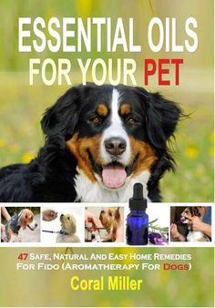 Free ebook right now- Essential Oils for Your Pet.  We like free!  note: you don't need to have a Kindle to get ebooks.  You can read ebooks on a smartphone, tablet, or computer. click image to get this free ebook