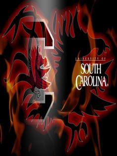 South Carolina Gamecocks 4 Wallpaper | iPhone | Blackberry