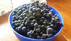In today's daily blog post I will show you how to make homemade grape jelly…
