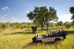 What does the future hold for South Africa's rangers and trackers? | Virgin