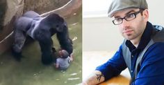 This gorilla controversy has gone too far...