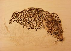 Leopards pyrography | Forums / Pyrography in General / Drinking Leopard (Step by Step) - The ...