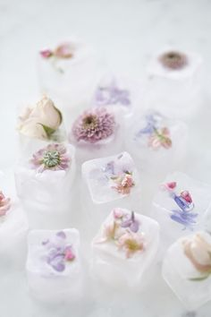Erin Sousa for Jillian Harris: DIY Floral Ice Cube