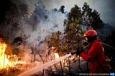 PORTUGAL, Talhadas: A firefighter tries to extinguish a wildfire in Talhadas near Oliveira de Frades, central Portugal, on August 26, 2013. AFP PHOTO/ PATRICIA DE MELO MOREIRA