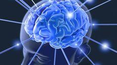 Die Funktionsweise des Gehirns ist eines der größten Rätsel, die uns der menschliche Körper noch aufgibt. Forscher finden jedoch immer mehr über unsere grauen Zellen heraus. Diese fünf Fakten über das Gehirn wussten Sie garantiert noch nicht.
