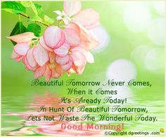 Have a Wonderful Day. Good morning!