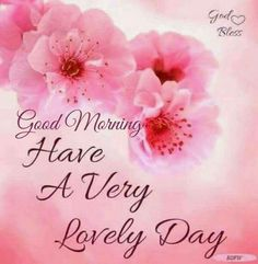 Have A Very Lovely Day days floral good morning morning images good morning greetings daily morning quotes Good Morning Tuesday, Good Morning Cards, Morning Morning, Good Morning Happy, Morning Humor, Morning Wish, Happy Tuesday, Morning Board, Morning People