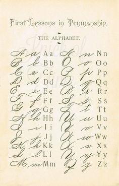 1895 School Primer Penmanship Page with cursive alphabet Alphabet Cursif, Typography Alphabet, Cursive Fonts Alphabet, Letters In Cursive, Handwritten Letters, Tattoo Alphabet, Old Letters, Handwriting Worksheets, Alphabet School