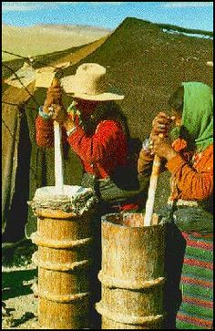 Making yak cheese