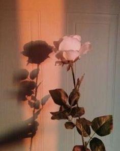 "pink blush watercolour never stop creating desktop wallpaper ""> Aesthetic Roses, Plant Aesthetic, Aesthetic Collage, Aesthetic Vintage, Rose Wallpaper Iphone, Flowers Wallpaper, Flower Backgrounds, Hd Backgrounds, Aesthetic Pastel Wallpaper"