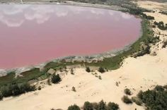 Senegal is home to Lake Retba aka Lac Rose, which is naturally pink. Due to its high salt content, the water has the perfect living conditions for a certain kind of micro-algae called dunaliella salina. The presence of these organisms is what gives the lake its pink hue.