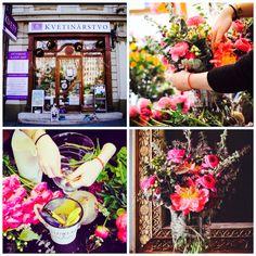 Kvetinová škola  Galéria kvetín