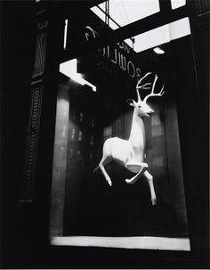 BERNICE ABBOTT Designer's Window, Bleeker Street, New York, 1947.