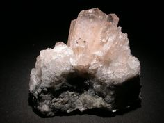 Kovdorskite. Kovdor Zheleznyi Mine, Kovdor Massif, Kola Peninsula, Murmanskaja Oblast', Northern Region, Russie FOV=45 mm Photo © Elmar Lackner 2007