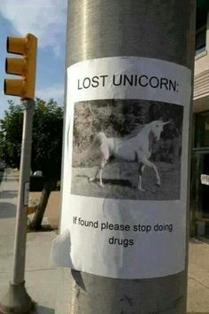 Did you see that unicorn?!?!