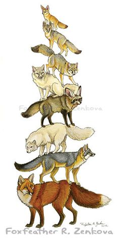 Fox Stack Painting Print - Wall art, animal stack, fennec, bat-eared, grey, red, arctic, corsac foxes, Totem Pole. $15.99, via Etsy.