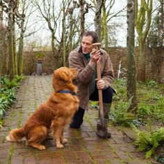 The Genius Who Cured My Dog Monty Don Feared The Worst