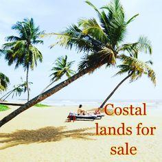 Sri lanka 🇱🇰 #coastalarealand #land #beach #sea #landscape #nature #landforsale #buyaland ##instagood #instertravelling #instergram #instetravel #luxurylifestyle #lux #luxury #luxurylife #coastal #instagood #lukeskywalker #luxurycar #luxuryhomes #luxuryhotels #nexttrip #nexttravel #nexttripsoon #germany #instergermany #england #buyaland  #luxurybuyer - posted by coastalland4salesrilanka https://www.instagram.com/coastalland4sale - See more Luxury Real Estate photos from Local Realtors at…
