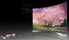 LG Curved Tv Television