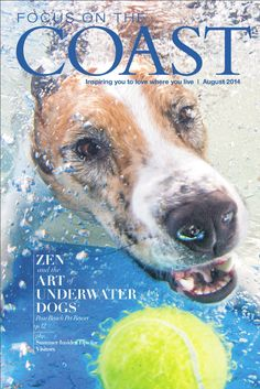 August 2014 issue of Focus on the Coast featuring Paw Beach and Seth Casteel.