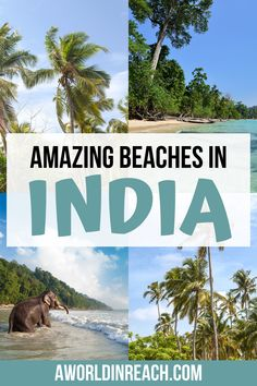 India has nearly 2000 miles of coastline dotted with some of the most beautiful beaches in the world. Ready to plan a beach getaway? Keep reading for a guide to 7 of the best beaches in India! / Indian beaches / most beautiful beaches in India / things to do India / places to visit in India / where to go in India / gorgeous beaches in India / India travel guide / cheap beaches in India / best places to travel in India / where to stay in India / India bucket list beaches / prettiest beaches