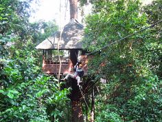 Le case sugli alberi più belle del mondo | Laos