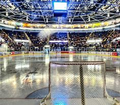 Nottingham Panthers home ice Ice Hockey Rules, Nottingham Panthers, Tennis Grips, Tennis Trainer, Tennis Accessories, Sherwood Forest, Tennis Players, England, Centre
