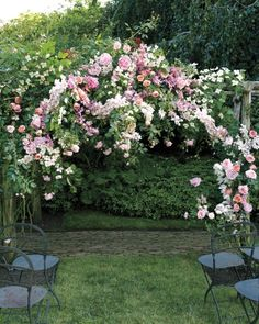 How much would you love to exchange your vows under this gorgeous arbor?
