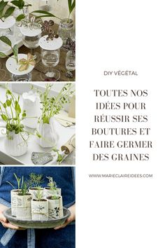 Pour créer votre petit potager, misez sur le DIY ! Le Baobab, Palmiers, Marie Claire, Place Cards, Place Card Holders, Table Decorations, New York, Illustrations, Potager Garden