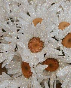 Glitter Wallpaper, Butterfly Wallpaper, Cute Wallpaper Backgrounds, Pretty Wallpapers, Iphone Backgrounds, Desktop Wallpapers, Photo Wallpaper, Bedroom Wall Collage, Photo Wall Collage