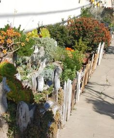 Driftwood, beach cottage style.  recycled wood garden fence