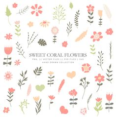 Clipart with coral flowers, clipart, hand drawn, lineart, pink, flowers doodle, vector flowers #flowers #doodles #peachpink