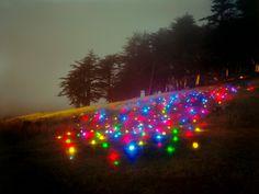 Landscape Light Sculptures by Barry Underwood  自然景観と調和するように発光ダイオード等の照明を置いた芸術。白~青の照明を使った Lee Eunyeol 氏の作品 http://www.thisiscolossal.com/2012/04/starry-night-light-installations-by-lee-eunyeol/   およびカラフルな照明を使った Barry Underwood 氏の作品 http://www.thisiscolossal.com/2012/03/landscape-light-sculptures/