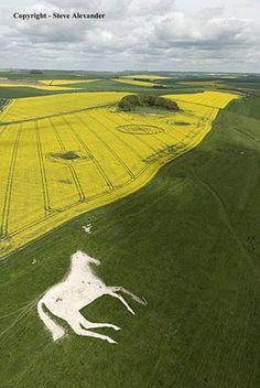 Circles over 1000ft long White Horses and crop circles.