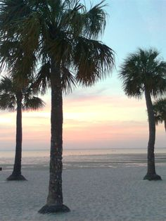Florida Sunset, Hernando County